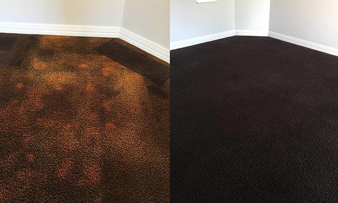 Prism Carpet Dyeing | Home - Perth WA